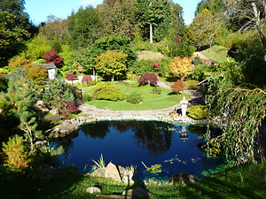 Counselling and Hypnotherapy. japanese garden lc